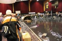 Carp Zwolle 2012 (18)