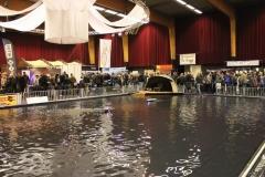 Carp Zwolle 2012 (7)