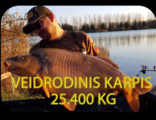 Didžiausias Lietuvos veidrodinis karpis